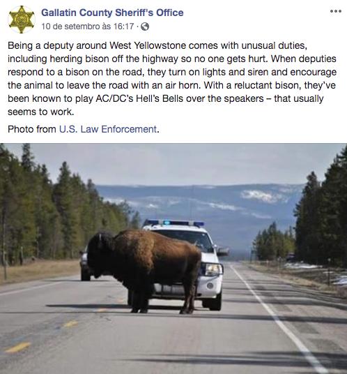 post facebook Gabinete do Xerife do Condado de Gallatin